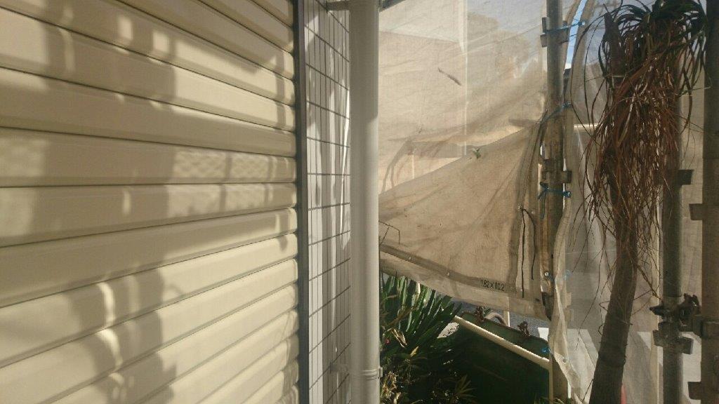 雨樋の上塗り塗装 修了