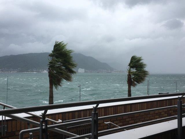 台風15号の強風