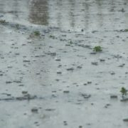 大雨による雨漏り