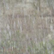 外壁・屋上の雨漏り対策